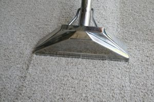 clean carpet when moving out