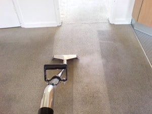 Wirral carpet cleaner