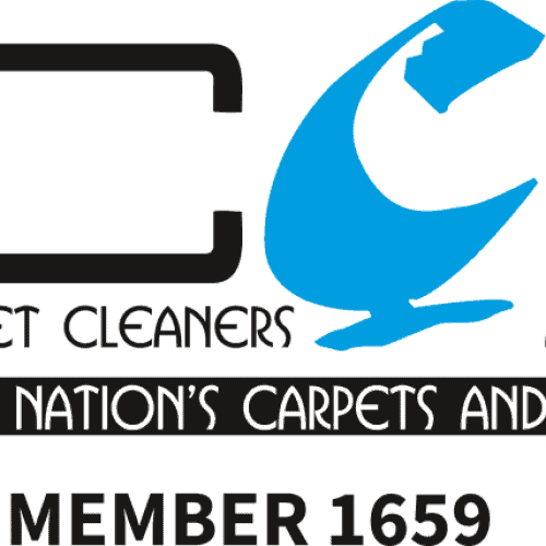Ncca carpet cleaner
