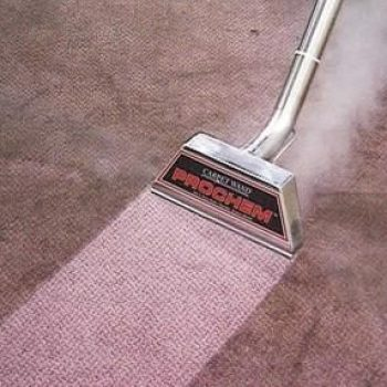 Watching a carpet being cleaned