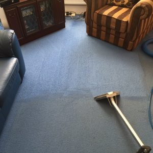 Manchester carpet steam cleaned